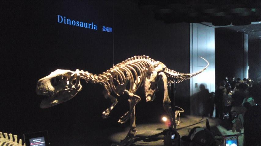 恐竜展3.jpg